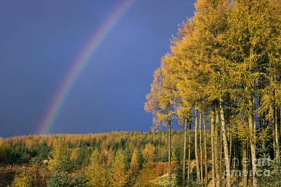 Dumfries Photograph - Autumn Rainbow by Rod McLean