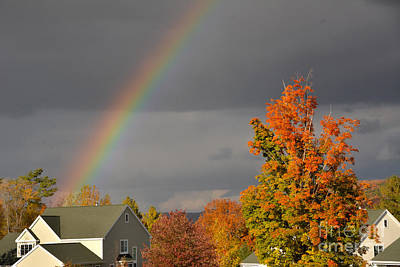 Global Design Shibori Inspired - Autumn Rainbow by Ruth H Curtis