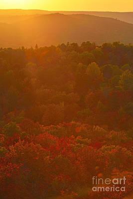 Photograph - Autumn Rays by Joshua McCullough