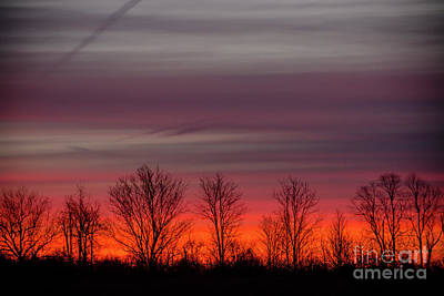 Photograph - Autumn Red Sunrise by Cheryl Baxter