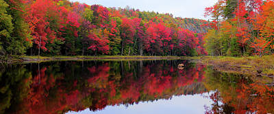 Photograph - Autumn Reflected by David Patterson