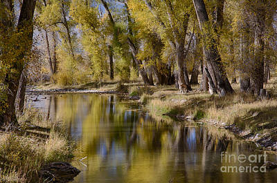 Photograph - Autumn Reflected by Idaho Scenic Images Linda Lantzy