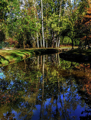 Photograph - Autumn Reflection Beauty by Roger Bester