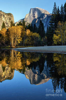 Photograph - Autumn Reflection II by Anthony Michael Bonafede