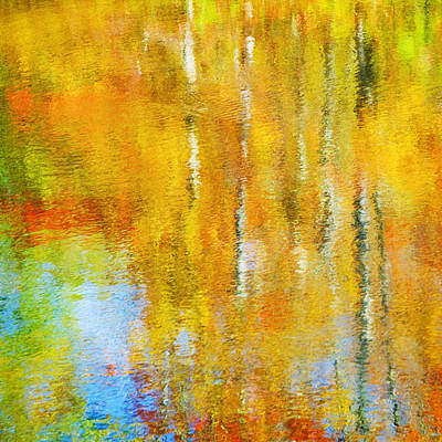 Photograph - Autumn Reflection by Jill Love