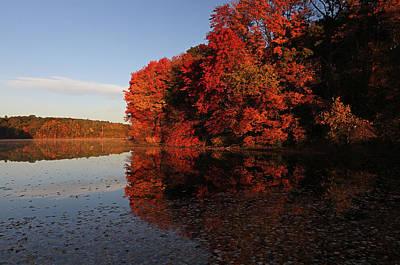 Massachusetts Photograph - Autumn Reflection by Juergen Roth