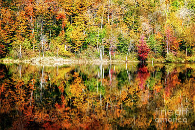 Photograph - Autumn Reflection by Scott Kemper