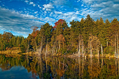 Zen - Autumn Reflection by Steve Harrington
