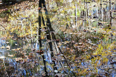 Photograph - Autumn Reflections 3 by Dennis Hedberg