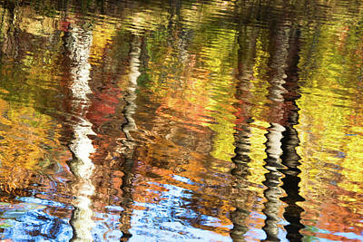 Photograph - Autumn Reflections-3 by Diane Macdonald