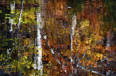 Photograph - Autumn Reflections by Ann Bridges