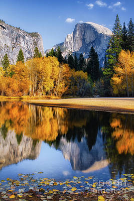 Photograph - Autumn Reflections by Anthony Bonafede