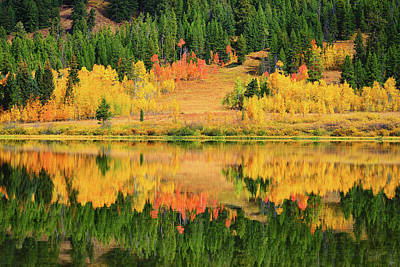 Photograph - Autumn Reflections At Two Ocean Lake by Greg Norrell