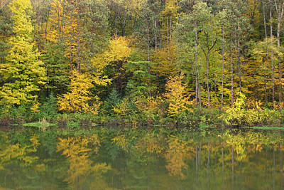 Photograph - Autumn Reflections  by Brendon Bradley