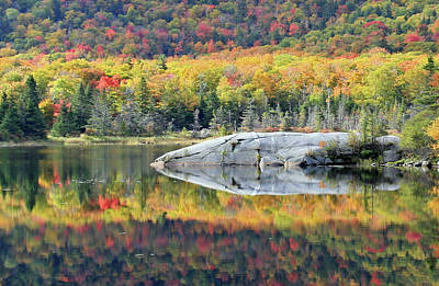 Photograph - Autumn Reflections by David Freuthal