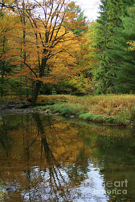 Autumn Reflections Art Print by Debra Straub
