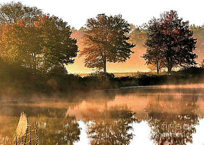 Photograph - Autumn Reflections by Janice Drew