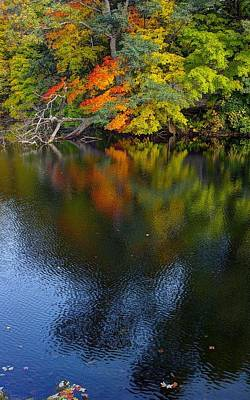 Photograph - Autumn Reflections by Randy Pollard