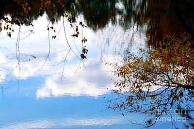 Photograph - Autumn Reflections by Robyn King