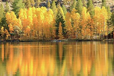 Photograph - Autumn Reflections by Sean Sarsfield