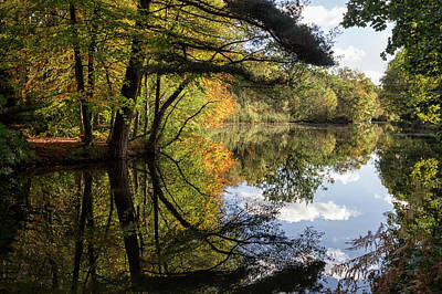 Photograph - Autumn Reflections by Shirley Mitchell
