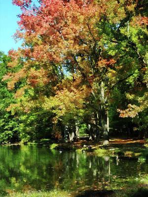 Photograph - Autumn Reflections by Susan Savad