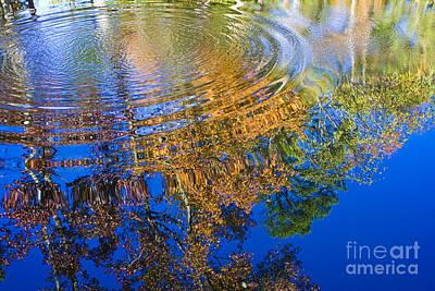 Autumn Reflections Art Print by Tim Hightower