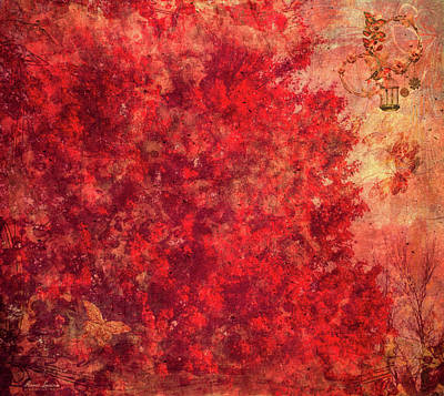 Photograph - Autumn Remembers by Anna Louise