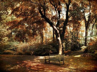 Dappled Light Photograph - Autumn Repose by Jessica Jenney