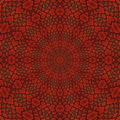 Digital Art - Autumn Rings Medallion-4 by Doug Morgan