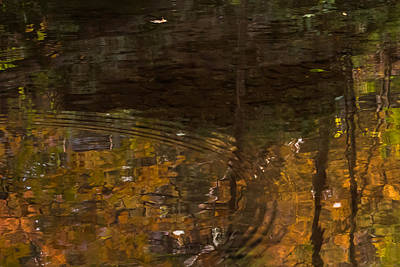 Photograph - Autumn Ripples Abstract by Terry DeLuco