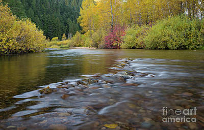 Photograph - Autumn Ripples by Idaho Scenic Images Linda Lantzy
