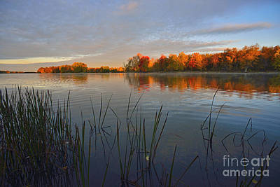 Petrie Island Photograph - Autumn Ripples by Joshua McCullough