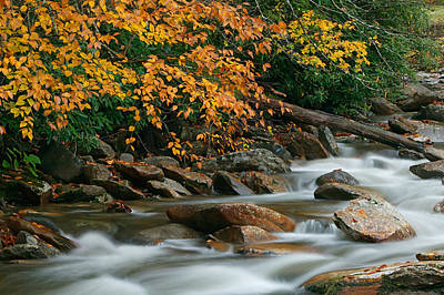 Photograph - Autumn River Cascades Iv by Clarence Holmes