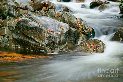 Photograph - Autumn River Cascades Vi by Clarence Holmes