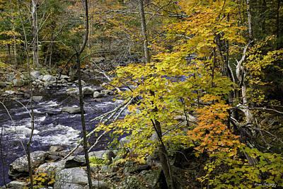 Photograph - Autumn River by Fran Gallogly