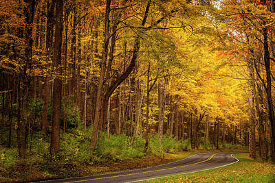 Photograph - Autumn Road by Andrew Soundarajan