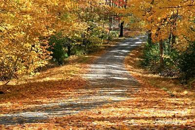 Autumn Road Art Print by Debra Straub