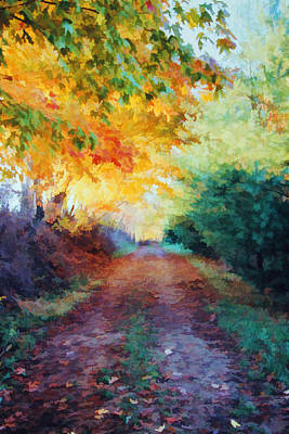 Photograph - Autumn Road by Diane Alexander