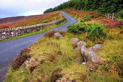 Photograph - Autumn Road In Wicklow Hills by Jenny Rainbow