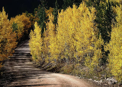 Photograph - Autumn Road by Jim Hill