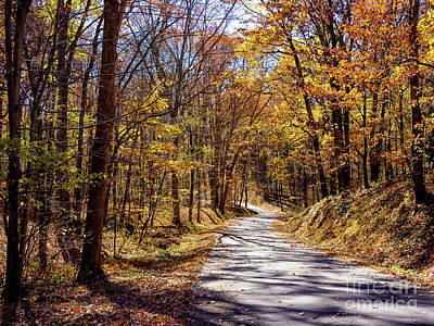 Photograph - Autumn Road by John Waclo