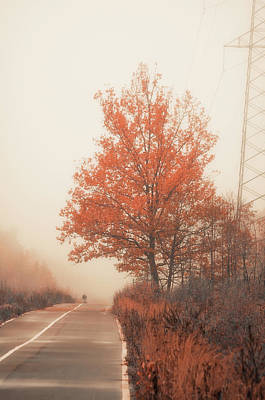 Falltime Photograph - Autumn Road by Konstantin Sevostyanov