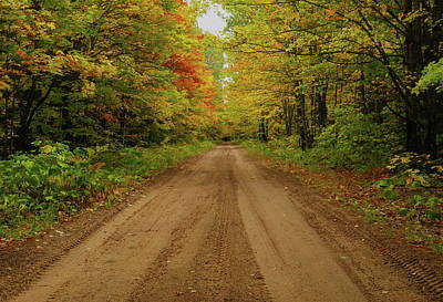 Gravel Road Photograph - Autumn Road by Michael Peychich