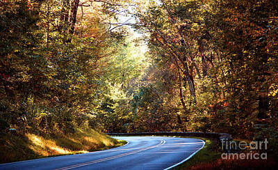 Photograph - Autumn Road by Rebecca Davis