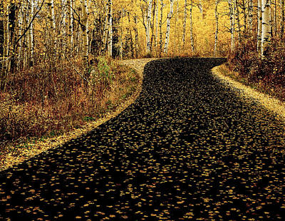 Photograph - Autumn Road by Scott Read