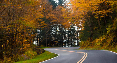 Photograph - Autumn Road by Shelby Young