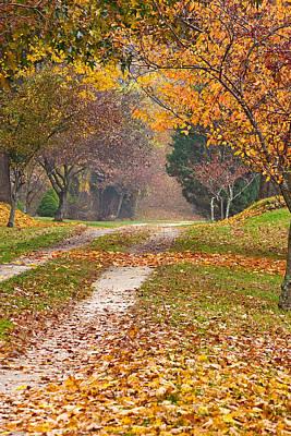Autumn Road Art Print by Stephen Sisk