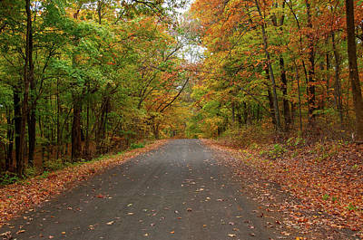 Photograph - Autumn Road by Steve Stuller