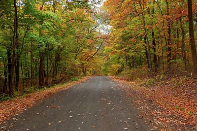 Photograph - Autumn Road by Steve Stuller